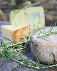 plateau de fromages rustiques