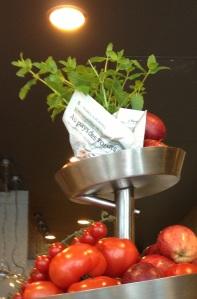 Tomates & Salade