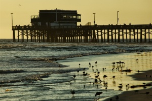 huntington Beach evening